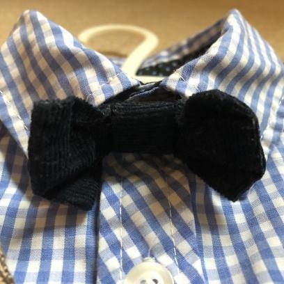 Used Mamas & Papas Navy Cord Bow Tie and Blue Check Shirt
