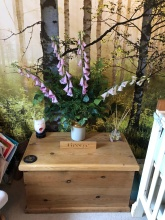 Used Pine Toy Chest, Gro egg Owl & Artificial Flower display