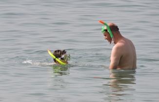 Swimming at Playa de las Americas